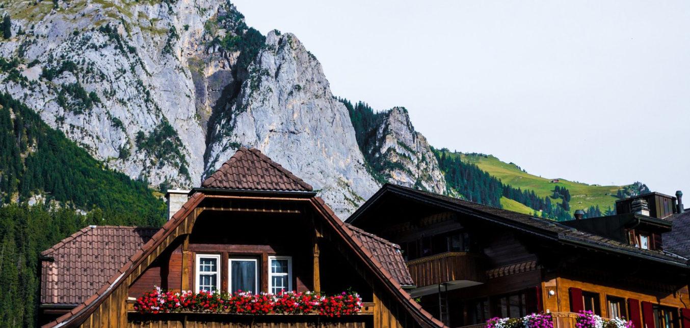La montagne s'invite chez vous