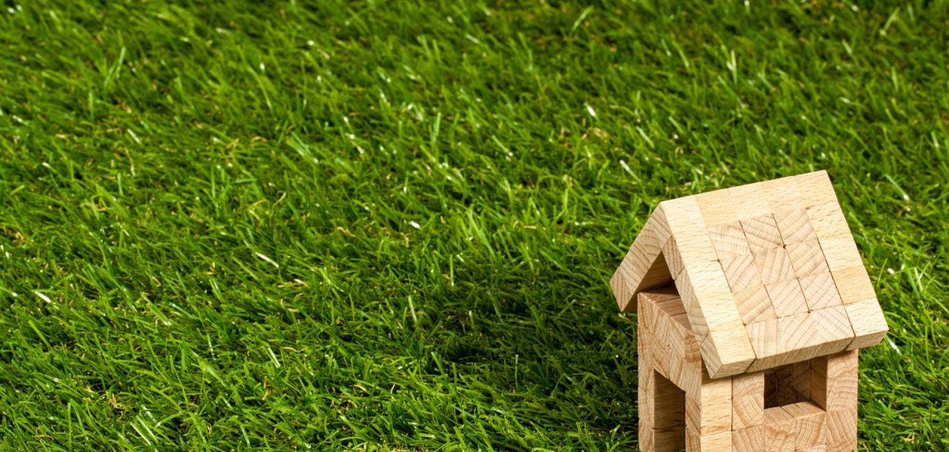 La toiture végétalisée : un concept respectueux de la nature