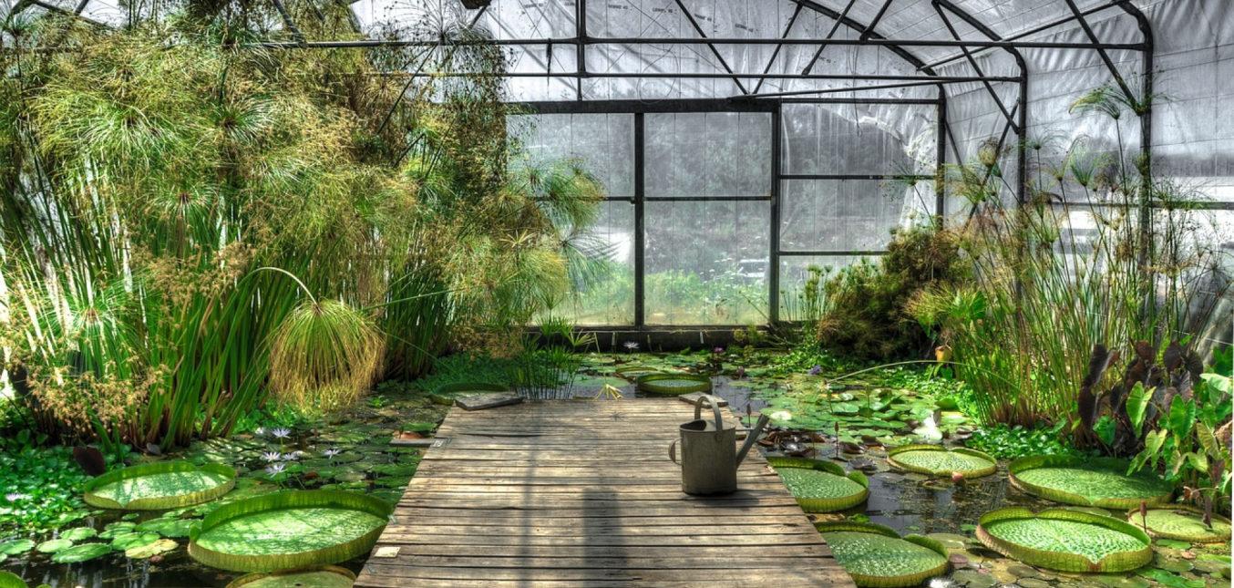 Comment bien choisir sa serre de jardin ?