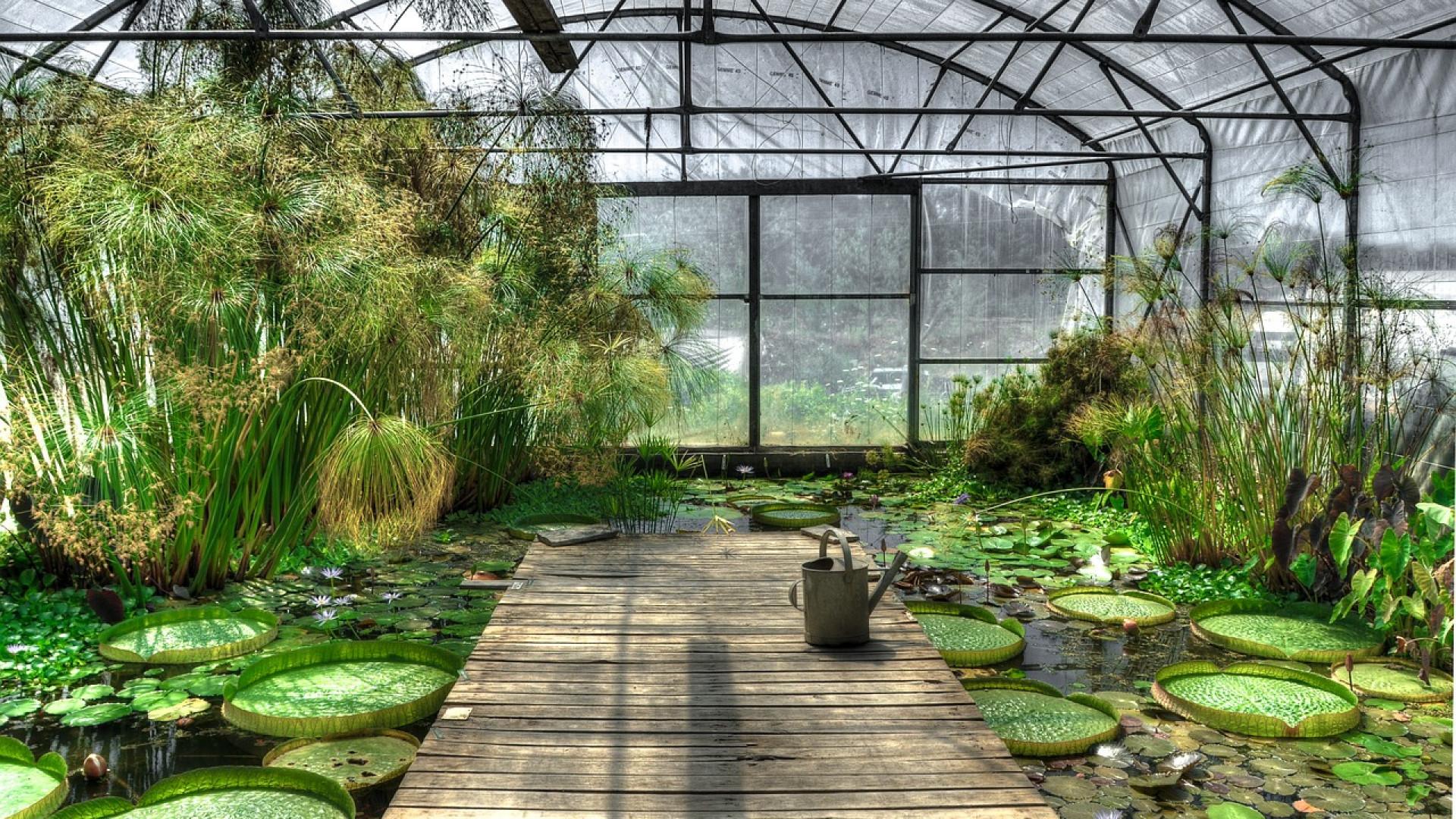 Comment bien choisir sa serre de jardin - Comment choisir une serre de jardin ...
