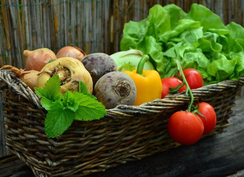 Jardiner au naturel avec des produits respectueux de la planète