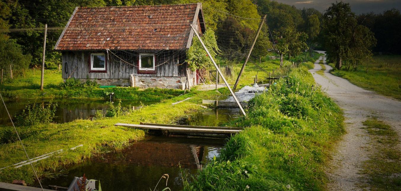 Les astuces pour optimiser son jardin